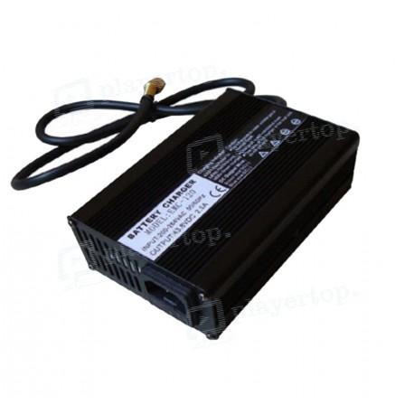Chargeur batterie 12V 24V