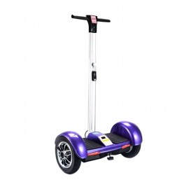 Segway charge maximum 120 kg
