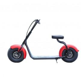 Citycoco charge maximum 200 kg