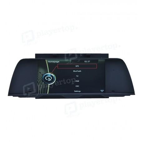 GPS BMW 5 2013